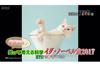 「猫は液体か?」等 NHK Eテレ『奇想天外!笑って考える科学 イグ・ノーベル賞2017』が10月22日放送