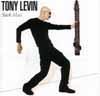 トニー・レヴィンが「Welcome」のミュージックビデオを公開