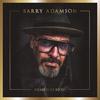 マガジン/ザ・バッド・シーズのバリー・アダムソン 新曲「The Hummingbird」公開
