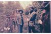 マーカス・キング・バンドのスタジオ・セッション映像22分がアーカイブ公開
