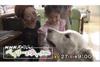 なぜ犬は人の心を癒やすのか?セラピー犬と少女の物語 NHKスペシャル『ベイリーとゆいちゃん』1月27日放送
