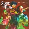 元ニルヴァーナのクリス・ノヴォセリックが在籍するGiants in the Trees 「Star Machine」のMV公開