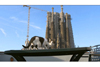 NHK『岩合光昭の世界ネコ歩き』の4月の新作は「バルセロナ」