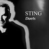 スティング、デュエット・アルバム『Duets』のグローバル特設サイト開設