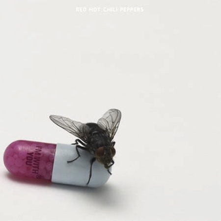 Red Hot Chili Peppers / I'm With You