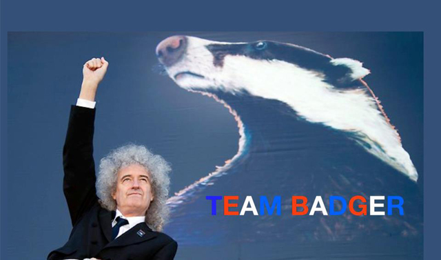 Team Badger - Brian May