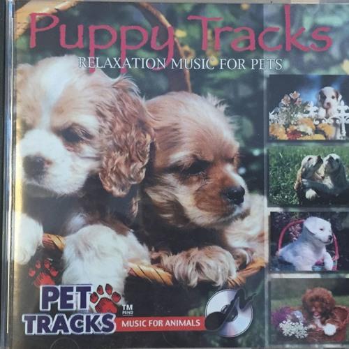 Puppy Tracks