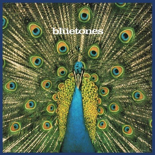 The Bluetones / Expecting To Fly
