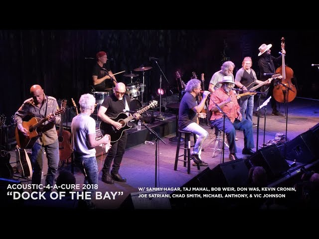 Sammy Hagar, Taj Mahal, Bob Weir, Don Was, Joe Satriani, Chad Smith, Michael Anthony, Kevin Cronin and Vic Johnson