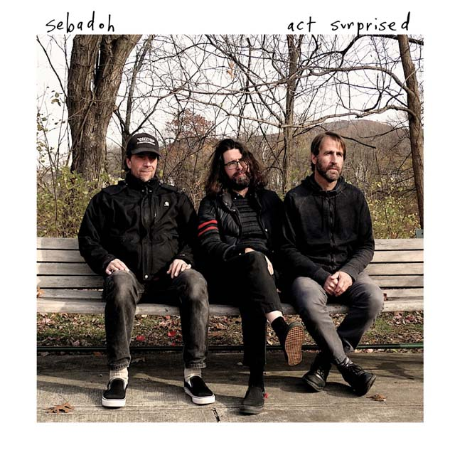 Sebadoh / Act Surprised