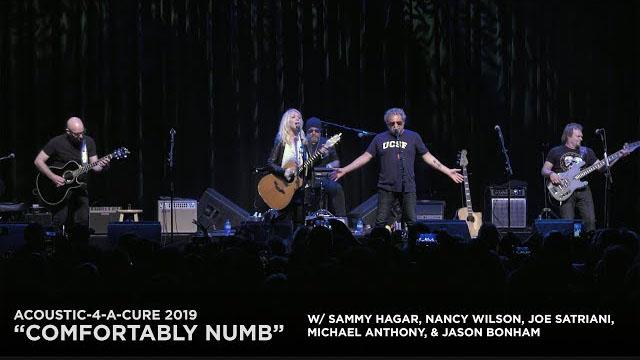 Acoustic-4-A-Cure VI - Sammy Hagar, Nancy Wilson Joe Satriani, Michael Anthony, Jason Bonham