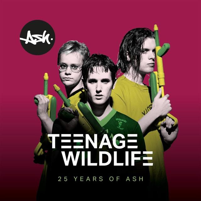 Ash / Teenage Wildlife: 25 Years of Ash
