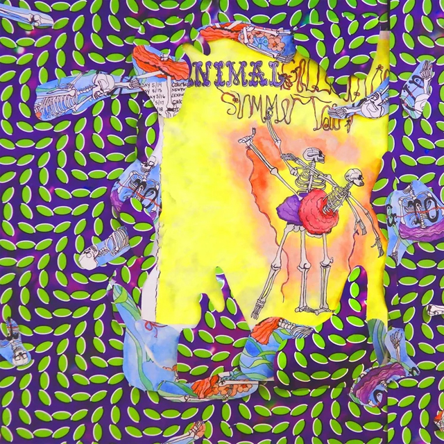 Animal Collective / Ballet Slippers