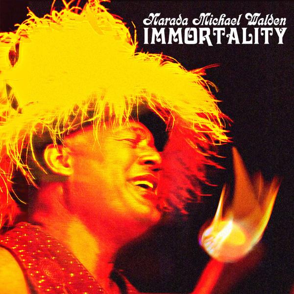 Narada Michael Walden / Immortality