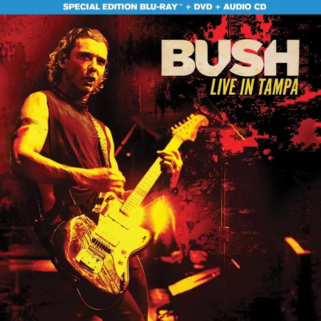 Bush / Live In Tampa