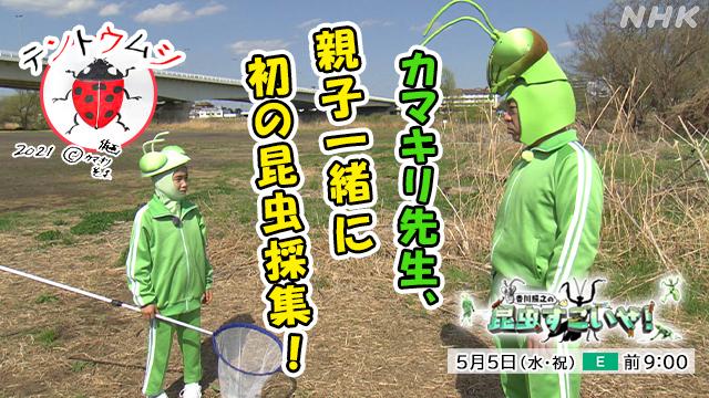 NHK『香川照之の昆虫すごいぜ!「春だよ!課外授業はテントウムシ」』(c)NHK