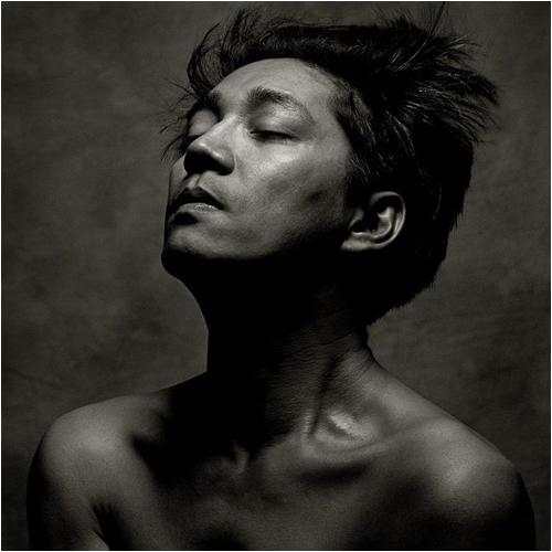 坂本龍一 / Beauty